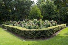Dahlia Garden chez Adelaide Botanic Garden, Australie du sud Images stock