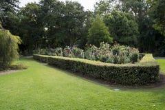 Dahlia Garden chez Adelaide Botanic Garden, Australie du sud Photos libres de droits