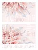 Dahlia greeting cards Stock Image