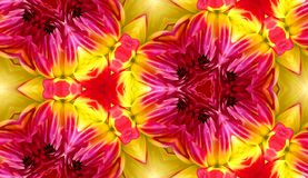 Dahlia Seamless Tile Background 4 Stock Photos