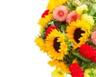Dahlia and sunflowers Royalty Free Stock Photo