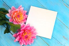 Summer background. dahlias and a canvas on a blue wooden background. art. space for a text Royalty Free Stock Photo