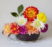 Dahlias. A vase full of multi coloured dahlias in full bloom Royalty Free Stock Image