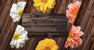 Dahlienblüten auf altem Holz lizenzfreies stockfoto