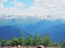 Dai in den kaukasischen Bergen Stockbild