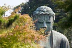Daibutsu或Budha Amida在Kotokuin 免版税库存图片