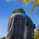 Daibutsu - grand Bouddha de temple de Kotokuin à Kamakura Photo stock
