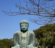 Daibutsu in Kamakura, Japan Royalty Free Stock Photos