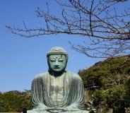 Daibutsu in Kamakura, Japan Royalty Free Stock Photos