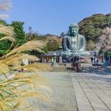 Daibutsu - Kotokuin寺庙的了不起的菩萨在镰仓 免版税库存照片