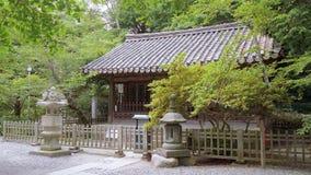 Daibutsu temple in Kamakura Japan. Travel photography stock video footage