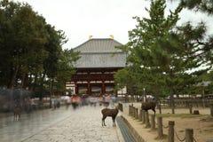 Daibutsuden av Todaiji Arkivfoto