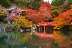 Daigo-ji świątynia z kolorowymi klonowymi drzewami zdjęcia stock