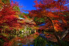 Daigo-ji red shrine landmark in Autumn, Kyoto Royalty Free Stock Images