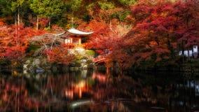 Daigo Ji tempel med höstmeplesidor Royaltyfria Bilder