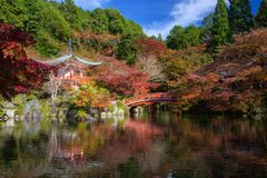 Daigo-ji temple in autumn, Kyoto. Daigoji red shrine and bridge with Autumn foliage garden near pond with reflection on water and clear blue sky, Kyoto, Japan stock image