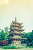 Daigo-ji temple  in autumn, Kyoto, Japan ( Filtered image proces Royalty Free Stock Photo