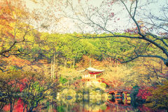 Daigo-ji temple  in autumn, Kyoto, Japan ( Filtered image proces Stock Images