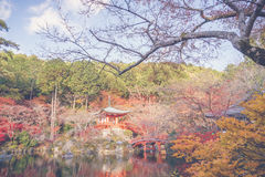 Daigo-ji temple  in autumn, Kyoto, Japan ( Filtered image proces Royalty Free Stock Image