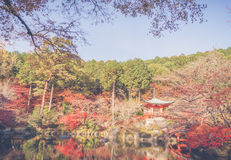 Daigo-ji temple  in autumn, Kyoto, Japan ( Filtered image proces Royalty Free Stock Photo