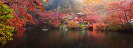 Daigo-ji temple in autumn. Panorama view of Daigo-ji temple with colorful maple trees in autumn, Kyoto, Japan