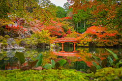 Daigo-ji temple with colorful maple trees in autumn. Beautiful autumn in japanese garden with colorful maple trees, Kyoto, Japan Royalty Free Stock Photography
