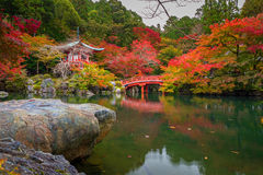 Daigo-ji temple with colorful maple trees in autumn, Kyoto Royalty Free Stock Images