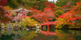 Daigo-ji temple with colorful maple trees in autumn, Kyoto Stock Images