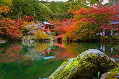 Daigo-ji temple with colorful maple trees in autumn, Kyoto Stock Photos