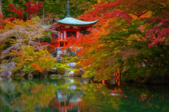 Daigo-ji temple with colorful maple trees in autumn Royalty Free Stock Photos