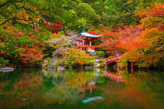 Daigo-ji temple with colorful maple trees in autumn. Kyoto, Japan Royalty Free Stock Photography