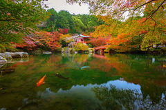 Daigo-ji temple with colorful maple trees in autumn. Kyoto, Japan Stock Images