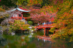 Daigo-ji temple with colorful maple trees in autumn, Kyoto. KYOTO, JAPAN - NOVEMBER 10, 2016 : Daigo-ji temple with colorful maple trees in autumn, Kyoto, Japan Stock Photos