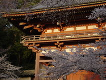 Daigoji embraced. Daigoji temple's spring. Kyoto, Japan 2005 stock images