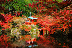 Daigoji mit Herbstfarben, Kyoto Lizenzfreies Stockfoto