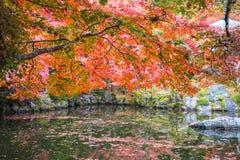 Daigoji fotografie stock libere da diritti