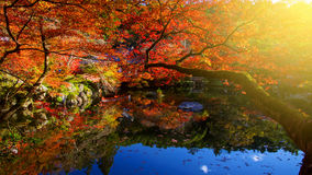 Daigoji temple with Autumn colors, Kyoto Royalty Free Stock Image