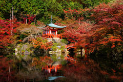 Daigoji Temple with Autumn foliage in Kyoto Stock Images