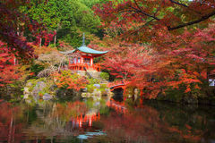 Daigoji temple with autumn foliage leaves Royalty Free Stock Photography