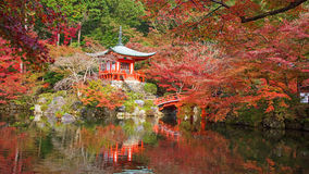 Daigoji temple with autumn maple trees Stock Images