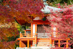 Daigoji Temple Royalty Free Stock Image