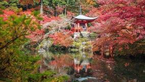 Daigoji temple , Kyoto ,Japan stock footage