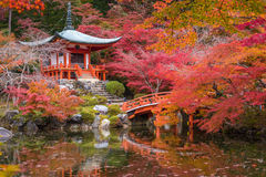 Daigojitempel in esdoornbomen, momijiseizoen, Kyoto, Japan Royalty-vrije Stock Fotografie