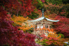 Daigojitempel in esdoornbomen, momijiseizoen, Kyoto, Japan Royalty-vrije Stock Foto