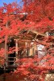 Daikaku-ji, Kyoto Obraz Stock