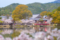 Daikaku-ji Temple at arashiyama, kyoto, japan. A Shingon Buddhist temple in Ukyo-ku Stock Photography