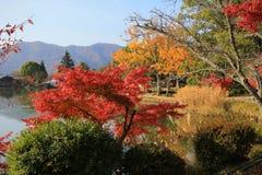 Daikakuji Royaltyfria Bilder