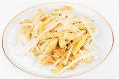 从Daikon和鸡的饮食沙拉 背景玉米片食物健康宏观工作室白色 库存照片