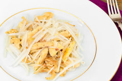 从Daikon和鸡的饮食沙拉 背景玉米片食物健康宏观工作室白色 免版税库存照片