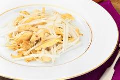 从Daikon和鸡的饮食沙拉 背景玉米片食物健康宏观工作室白色 免版税库存图片
